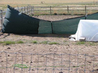 Damaged Wind Fence Used To Protect My Hoop Houses