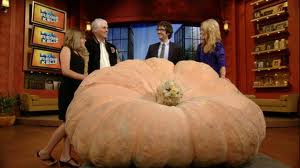 2011 WR On the News In New Your City Talking About Kelsey's Pumpkin