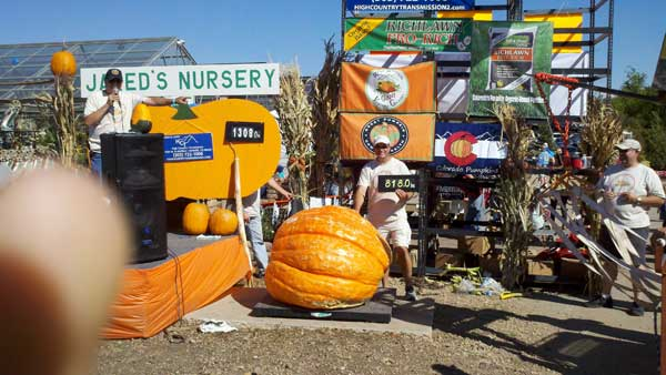 Jared's Nursery Giant Pumpkin Weigh Off