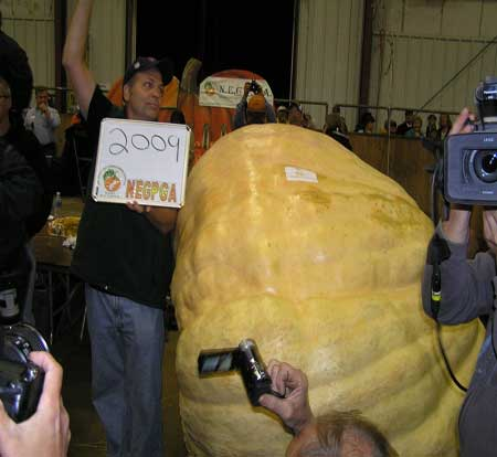 2012 World Record Pumpkin, 2009 Pounds Grown By Ron Wallace.