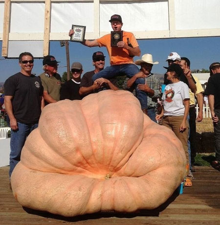 2013 GPC World Pumpkin Record